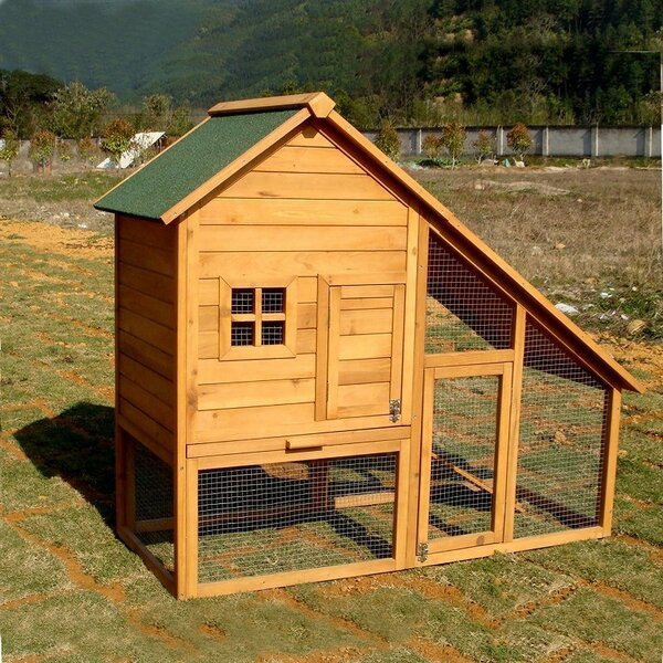 Multi-Level Chicken Coop by ALEKO