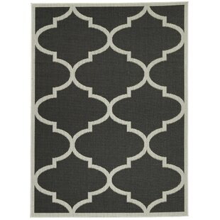 Price Check Chapman Morroccan Trellis Power Loom Black Indoor/Outdoor Area Rug By Charlton Home