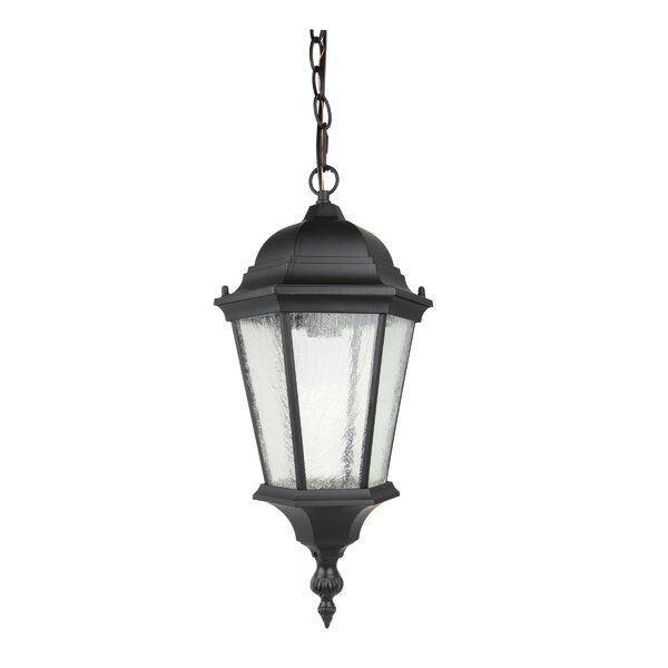 Dunbar Lantern Pendant by Canora Grey