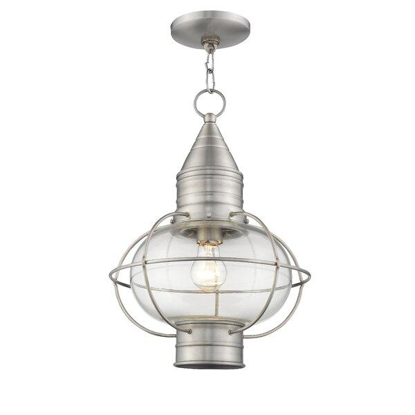 Elmhurst 1-Light Outdoor Hanging Lantern by Breakwater Bay