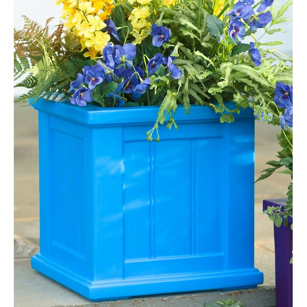 Lexington Self-Watering Plastic Planter Box by Plow & Hearth