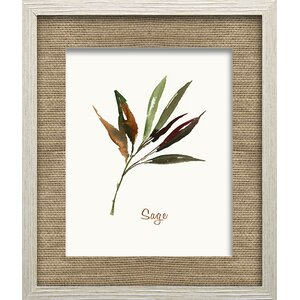 Wild Sage by Asia Jensen Framed Painting Print by Star Creations