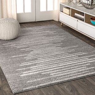 Wayfair Gray Silver Red Area Rugs You Ll Love In 2021