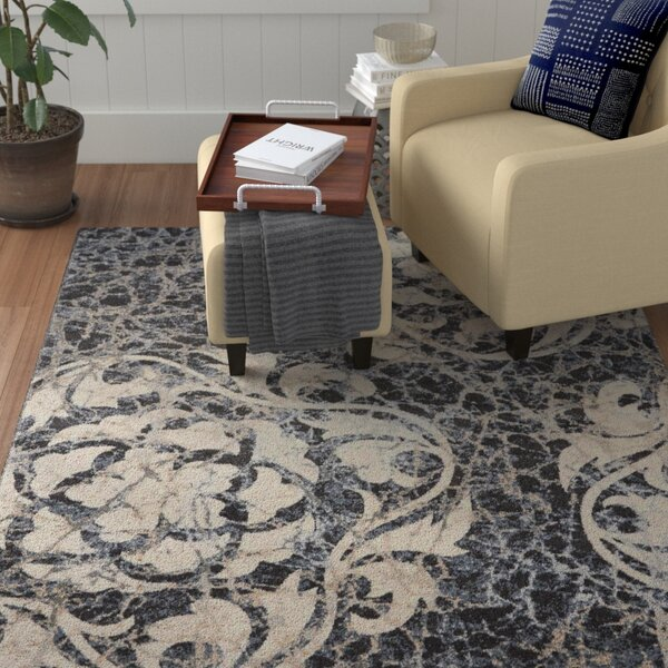 Aberdeen Ivory/Charcoal Area Rug by Red Barrel Studio