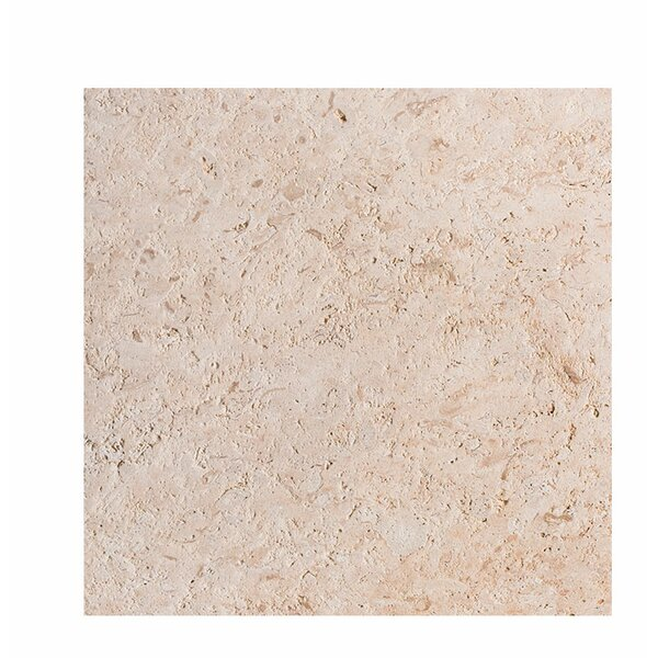 ShellStone Tile 18 x 18 Field Tile in Brushed by Parvatile
