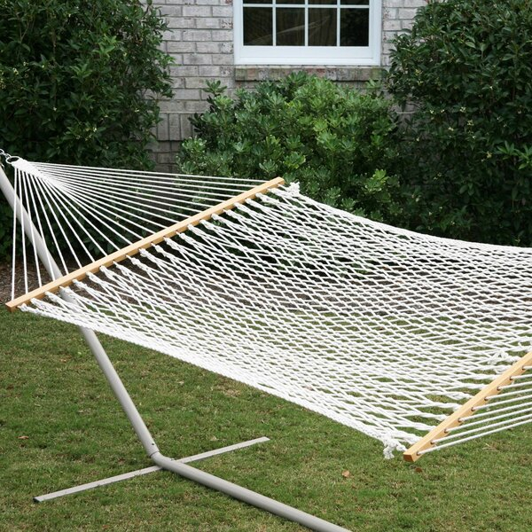Franks Rope Polyester Double Tree Hammock by Breakwater Bay