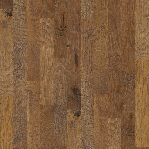 Evergreen 5 Engineered Hickory Hardwood Flooring in Sierra by Shaw Floors