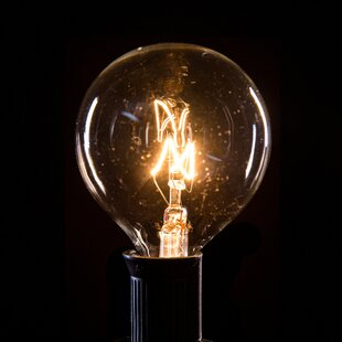 indoor string lights you ll love wayfair