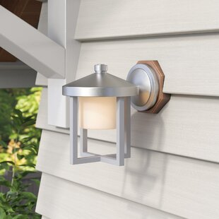 Great choice Three Rivers 1-Light Outdoor Wall Lantern By Red Barrel Studio