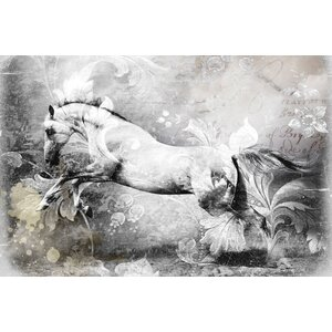 'White Horse' Graphic Art Print on Canvas by East Urban Home
