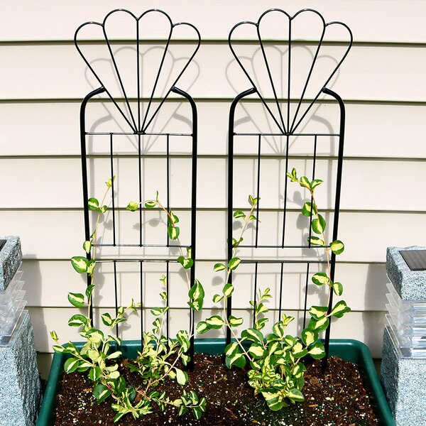 Flower Design Steel Gothic Trellis (Set of 2) by Wildon Home ®