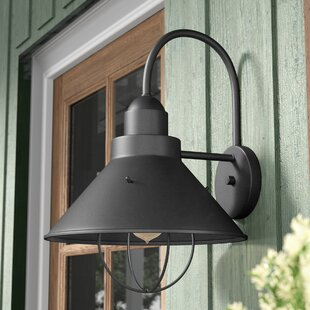 Great choice Castro 1-Light Outdoor Barn Light By Longshore Tides