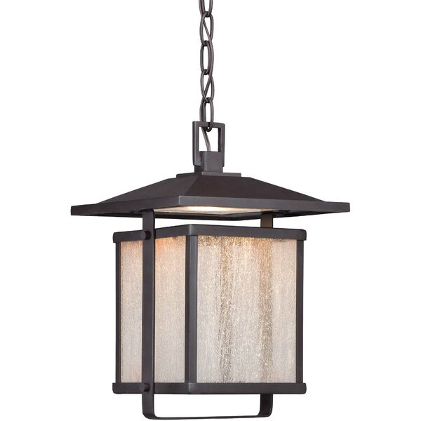 Olivarez 1-Light Outdoor Hanging Lantern by Brayden Studio