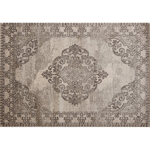 Ruder Brown/Beige Area Rug by World Menagerie