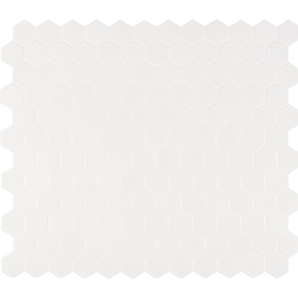 Hexagon 2 x 2 Porcelain Mosaic Tile in Glossy White by MSI