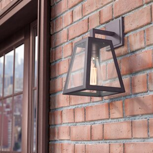 Order Sasha 1-Light Traditional Outdoor Wall Lantern By Trent Austin Design