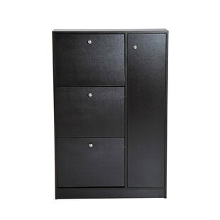 Top Pull Out Door 28 Pair Shoe Storage Cabinet By Latitude Run