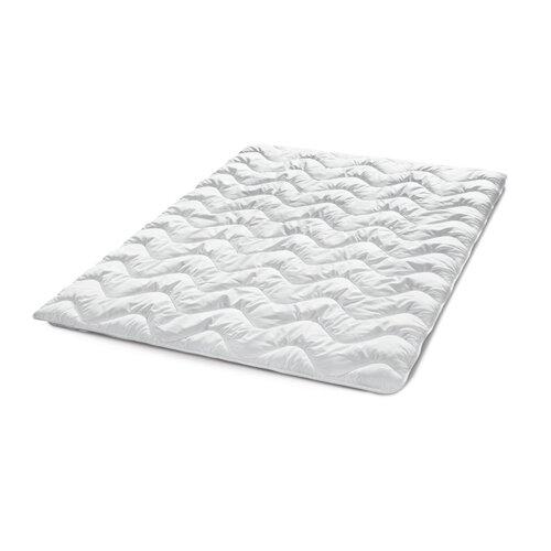 Faserbettdecke (leicht) Wayfair Sleep Größe: 200 x 200 cm | Heimtextilien > Decken und Kissen > Bettdecken | Wayfair Sleep