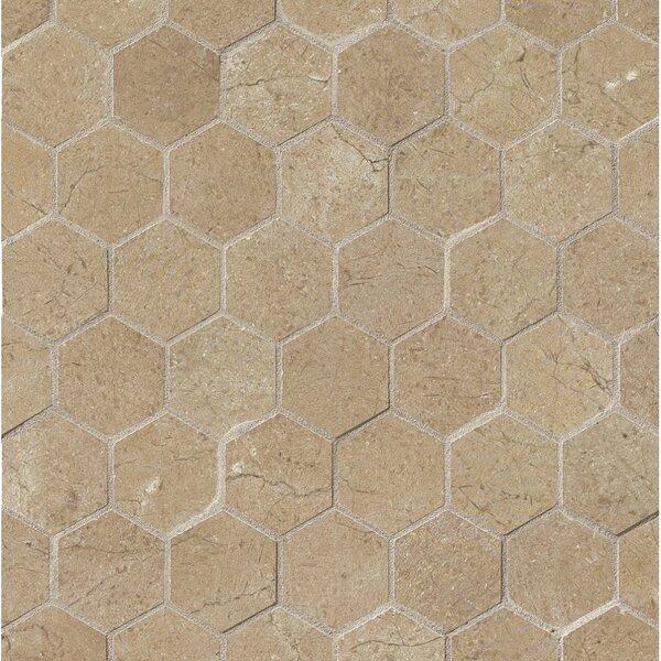 El Dorado 2 x 2 Porcelain Hexagon Mosaic Tile in Starfish by Grayson Martin