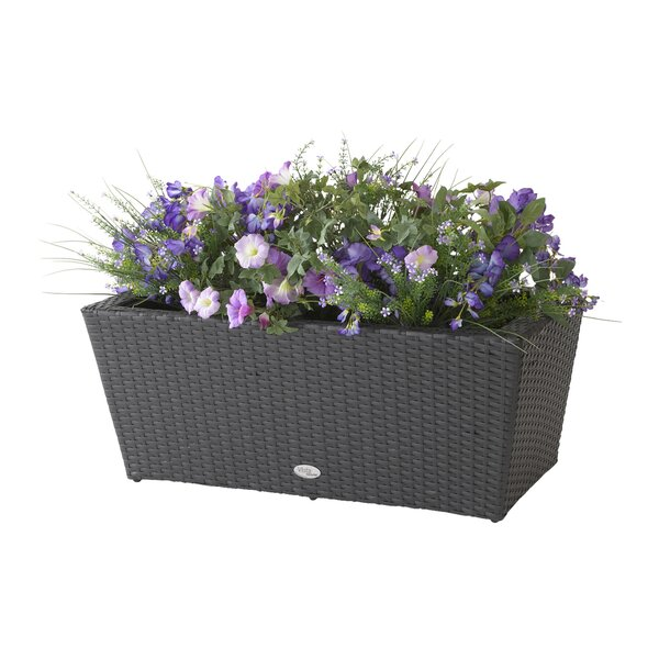 Vista Resin Planter Box by DMC