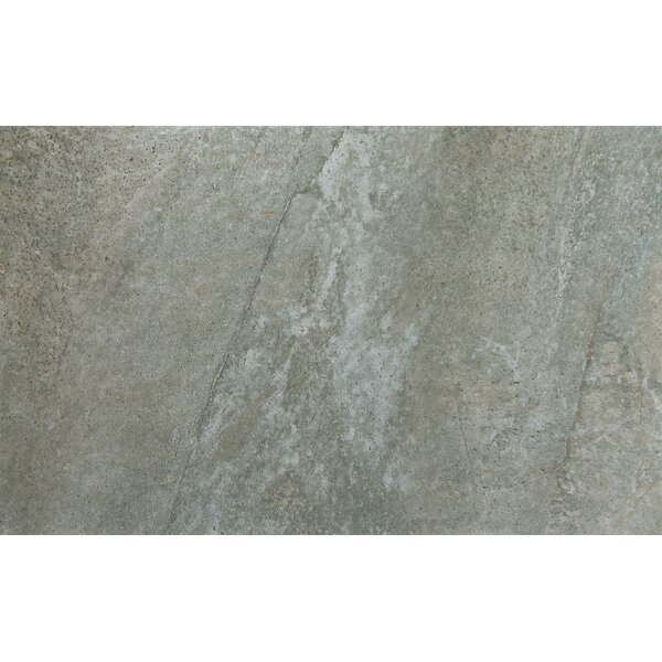 Trovata 12 x 24 Porcelain Field Tile in Ledger by Emser Tile