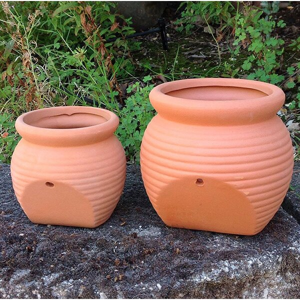 Proulx 2-Piece Terracotta Pot Planter Set by August Grove