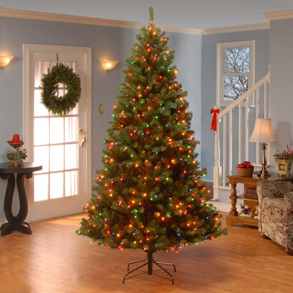 Green Spruce Artificial Christmas Tree with Multicolor Lights by Three Posts