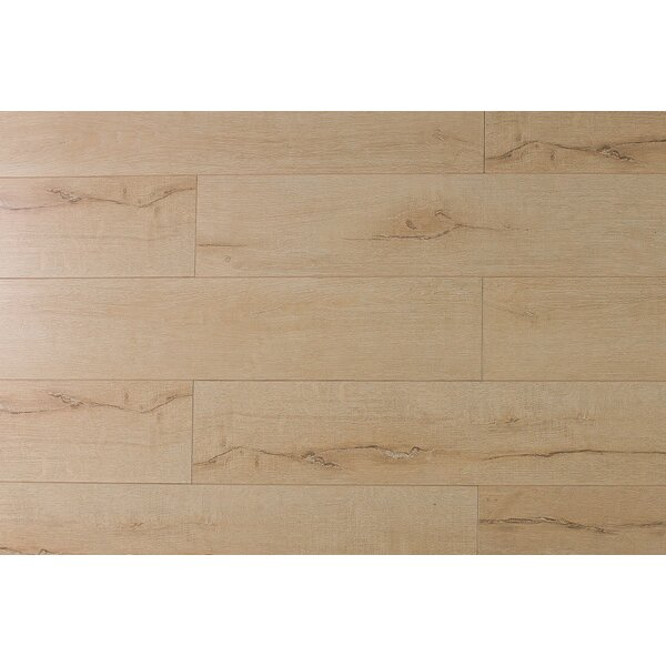 Jeramiah 7 x 48 x 12mm Oak Laminate Flooring in Taupe by Serradon