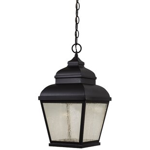 Reviews Dorchester 1-Light Outdoor Hanging Lantern By Darby Home Co
