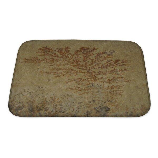 Bravo Close Up of Fossil Ferns Petrified in a Stone Slab Bath Rug by Gear New