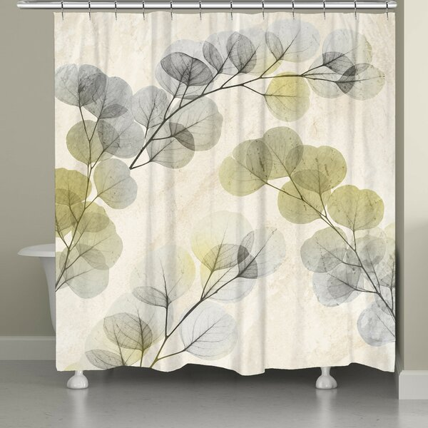 Canisteo X-Ray of Eucalyptus Leaves Shower Curtain by Latitude Run