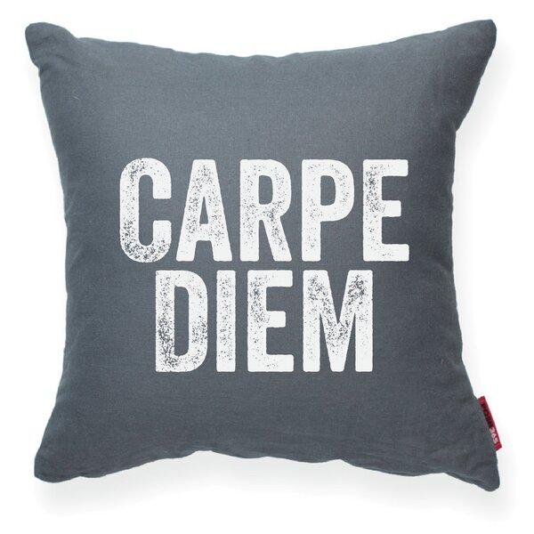 Expressive Carpe Diem Decorative Throw Pillow by Posh365