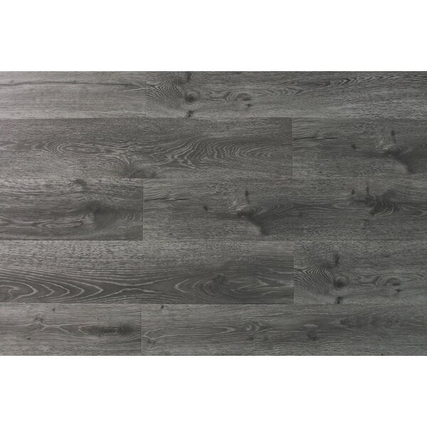 Aditya 8 x 72 x 11.93mm Oak Laminate Flooring in True Gray by Serradon