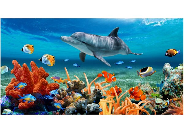 Dolphin Coral Reef Beach Towel by Kaufman Sales
