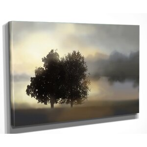 'Misty Morning' by Nan Graphic Art on Wrapped Canvas by Wexford Home