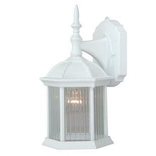 Tennyson 1-Light Outdoor Wall Lantern By Alcott Hill Outdoor Lighting