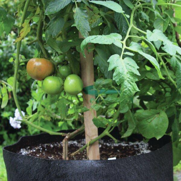20 Gallon Tomato & Melon Black Grower by Smart Pot