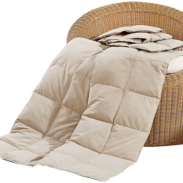 Grunwald Natural Down and Feather Blanket by Alwyn Home
