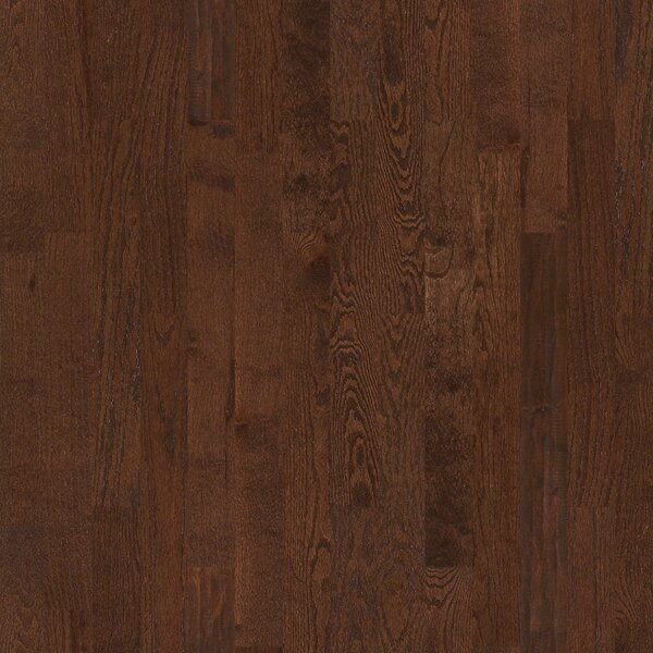 Basinger 4 Solid Red Oak Hardwood Flooring in Pooler by Shaw Floors