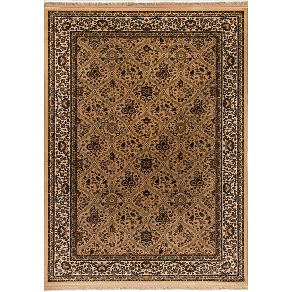 Cirro Evans Wool Latte Area Rug by Dynamic Rugs