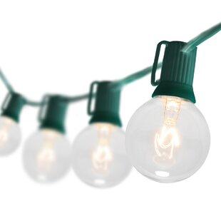 Reviews 25-Light Globe String Lights By Wintergreen Lighting