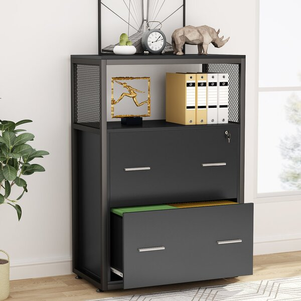 Lolly 2-Drawer Lateral File Cabinet