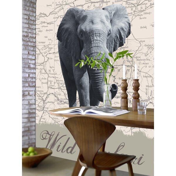 Ideal Decor Wild Safari Wall Mural by Brewster Home Fashions