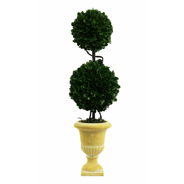 Faux Preserved Boxwood Floor Topiary in Pot by Ophelia & Co.