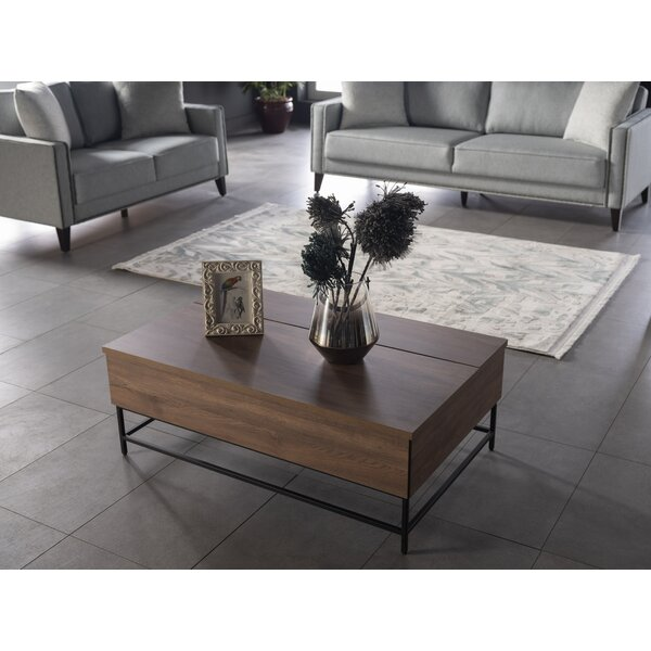 Strängnäs Lift Top Frame Coffee Table With Storage By Gracie Oaks
