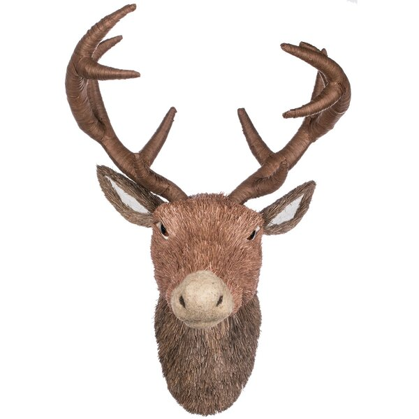 Isadora Twig Deer Wall Bust by Millwood Pines
