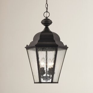 Clearance Drennen 4-Light Outdoor Hanging Lantern By Darby Home Co
