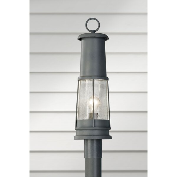 Annamarra Outdoor 1-Light Lantern Head by Longshore Tides