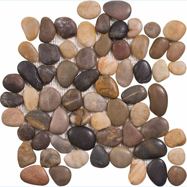 Stone Pebble Tile in Multi by Parvatile