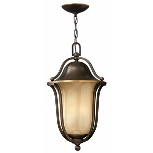 Check Prices Bolla 1-Light Outdoor Pendant By Hinkley Lighting
